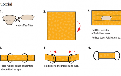 An overview of all the steps. Remember to cut your coffee filter or paper towel in half before starting.
