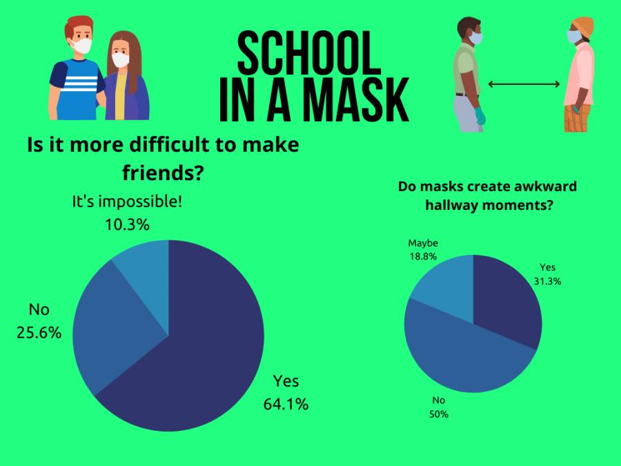 Navigating Half-Hidden Faces: Sociality Behind a Mask